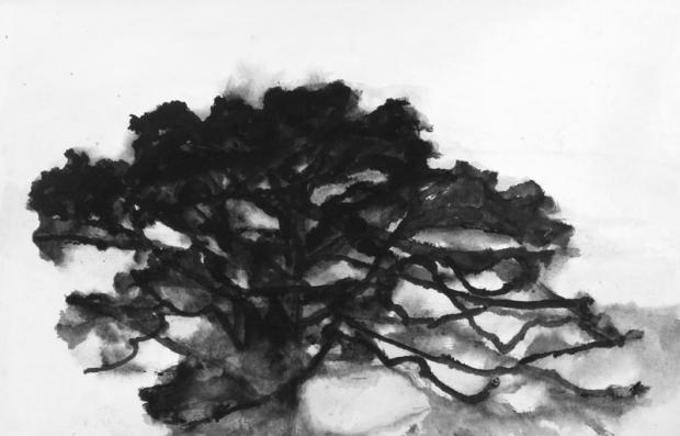 Chêne Taille - 95 x 140 cm Technique - gouache sur papier marouflé sur toile Date - 2007 Crédits photo Illés Sarkantyu